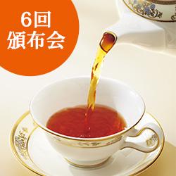 華やぎ定番紅茶6回頒布会