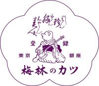 国産ヒレ肉の特製カツ丼の具